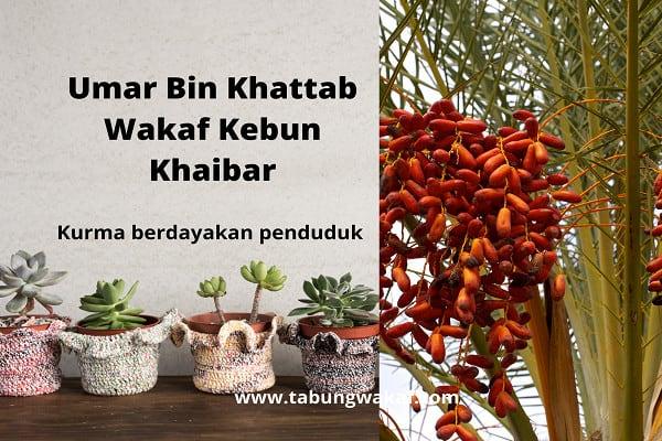 Wakaf kebun kurma dari Umar Bin Khattab