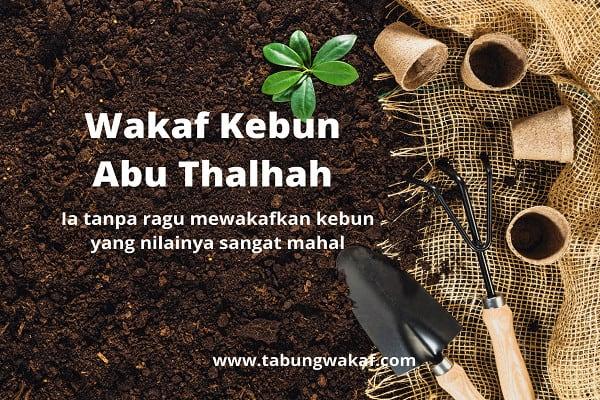 i Kebun dari Abu Thalhah - Tabung Wakaf